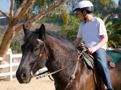 Séjour linguistique en immersion chez le professeur avec équitation