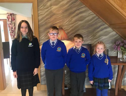 Témoignage de Ema en scolarité en Irlande